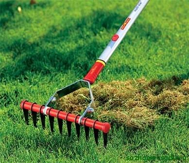 Як можна заробити на догляді за газоном